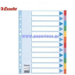 ΔΙΑΧΩΡΙΣΤΙΚΑ ΧΑΡΤΙΝΑ Α4  12 ΘΕΜΑΤΑ ΧΡΩΜΑΤΙΣΤΑ ESSELTE Διαχωριστικά ειδη γραφειου, αναλωσιμα, γραφικη υλη - paperless.gr